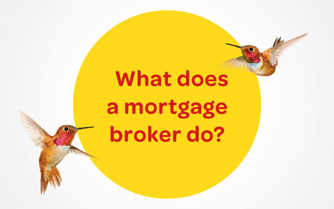 What does a broker do